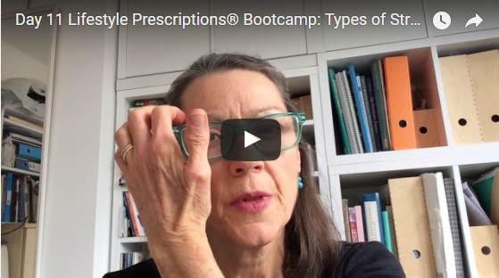 Day 11 Lifestyle Prescriptions® Bootcamp: Types of Stress Triggers