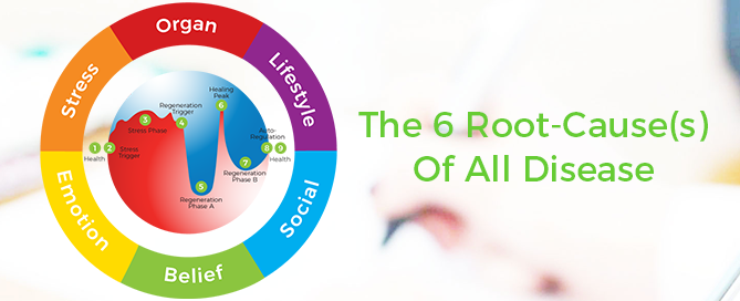 What are the 6 Root-Cause(s) Of All Illness?
