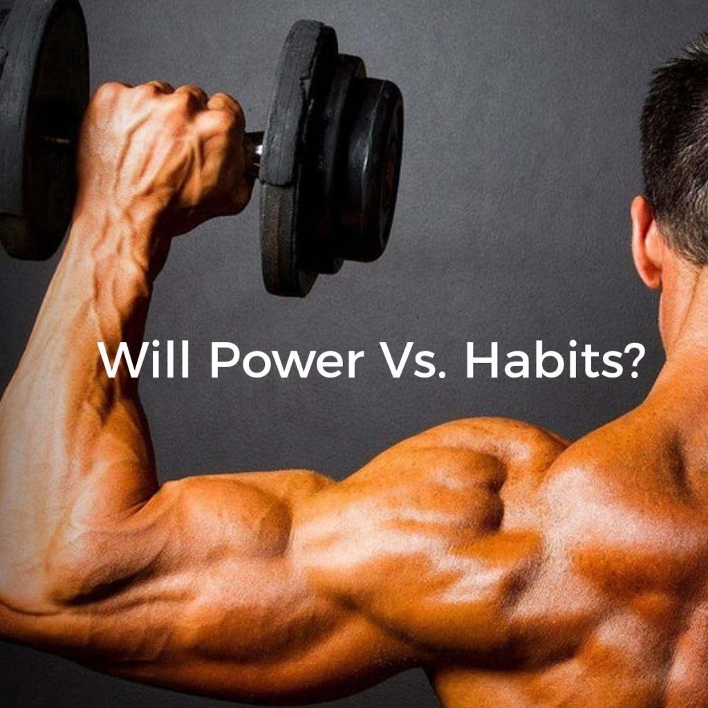 Will Power vs. Habits? Who's the winner?